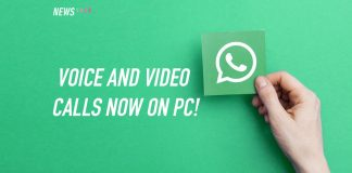 whatsapp, voice and video call, voice call, video call