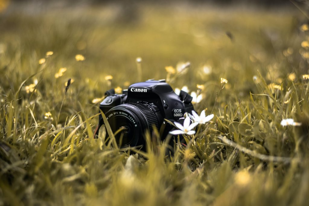 Five reasons why you don't need a DSLR in 2021 35